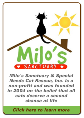 Milos Sanctuary